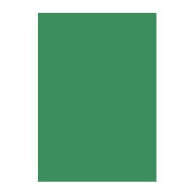 Картон Papicolor A4 270 g/m2 10 л. Т. зелен