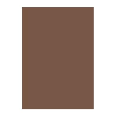 Картон Papicolor A4 270 g/m2 10 л. Кафяв