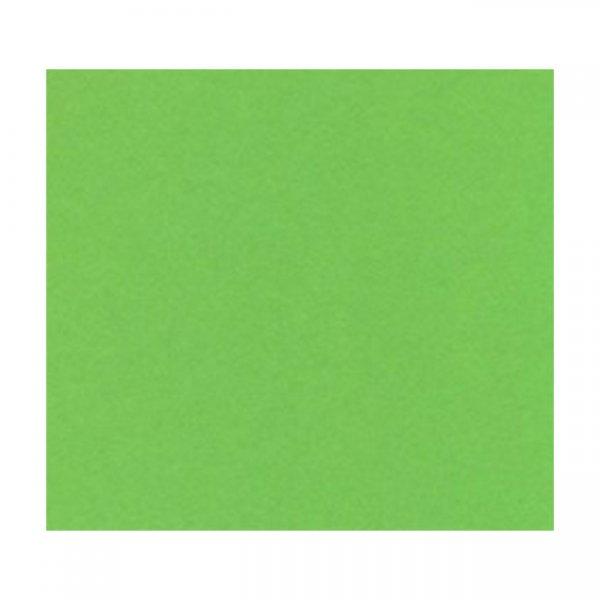 Картон Papicolor A4 270 g/m2 10 л. Зелен