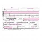 Бюджетно платежно нареждане розово, хим. А6 100