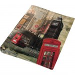 Panta Plast Папка London Collection, PP, с 2 ринга, A4