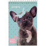 Блок-нот Kite Studio Pets A6 48 л